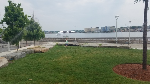 Review-of-Thomas-M-Menino-Park-Charlestown-MA